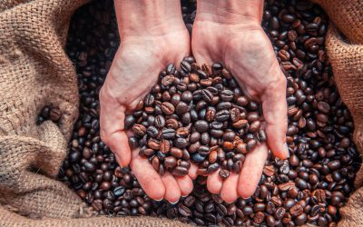 Everything you need to know about Fair Trade coffee