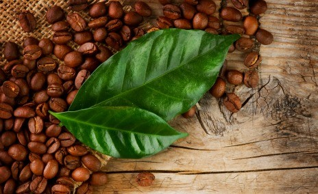 What's the difference between organic and inorganic coffee?